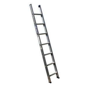Van Ladders