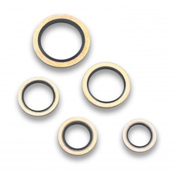 5/16 IN. DOWTY SEAL - PKG. OF 2